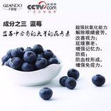 千妍堂美白片蓝莓成分